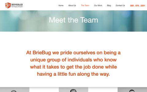 Screenshot of Team Page briebugsoftwaresolutions.com - BrieBug Software Solutions   Web & Mobile App Development  AngularJS Denver   HTML5 - captured June 28, 2016