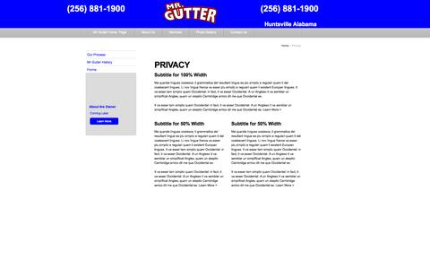 Screenshot of Privacy Page mrgutterusa.com - Privacy - captured Oct. 26, 2014
