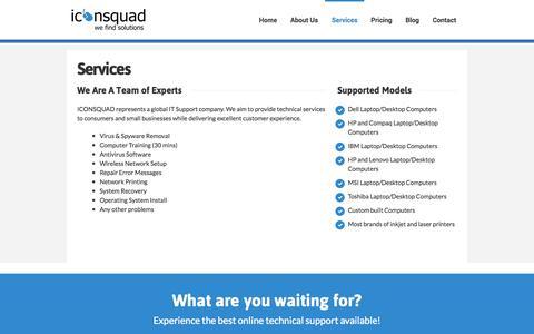 Screenshot of Services Page iconsquad.com - Services - IconSquad - captured Sept. 30, 2014