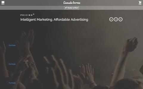 Screenshot of Pricing Page lunado.us - Lunado Intel | Services | Pricing - captured Nov. 1, 2014