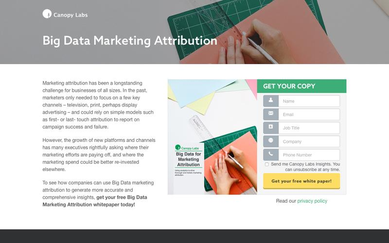 Big Data Marketing Attribution - Canopy Labs