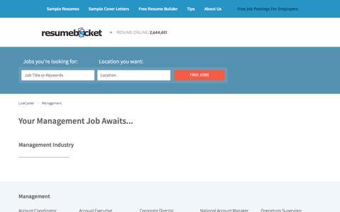 Screenshot of Team Page resumebucket.com - Management Jobs | Find The Best Management Jobs | ResumeBucket - captured Sept. 4, 2016