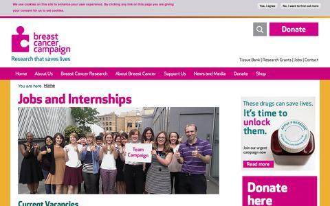 Screenshot of Jobs Page breastcancercampaign.org - Jobs and Internships | Breast Cancer Campaign - captured Sept. 19, 2014