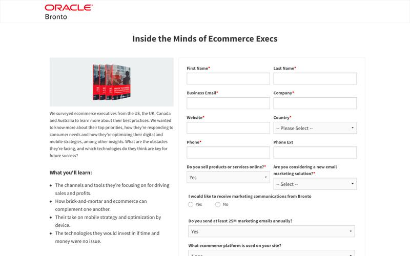 White Paper: Inside the Minds of Ecommerce Execs | Bronto Software
