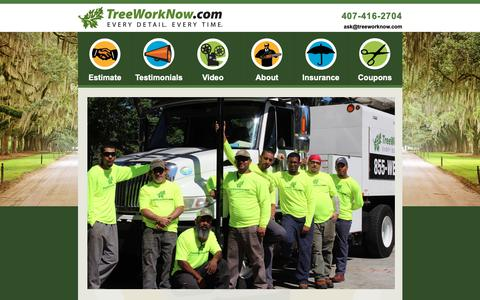 Screenshot of About Page treeworknow.com - Orlando Tree Trimmer : Lake Mary Tree Service : Tree Removal Orlando - captured Nov. 18, 2018