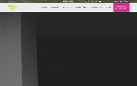 Screenshot of Services Page blakerosesalon.com - Hair Color,Hair Extensions, Make Up,  Nail Salon Columbus Ohio - Blake Rose Salon & Spa - captured Jan. 6, 2016