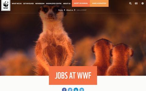 Screenshot of Jobs Page wwf.org.au - WWF - Jobs - WWF-Australia - captured Dec. 12, 2018