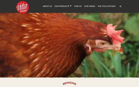 Screenshot of Home Page vitalfarms.com - Vital Farms   Bringing Ethical Food to the Table - captured Nov. 7, 2019