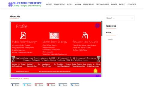 Screenshot of About Page bluearthenterprise.com - About Us   Blue Earth Enterprise - captured Nov. 22, 2016