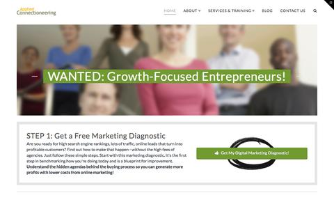 Screenshot of Home Page appliedconnectioneering.com - Digital Marketing Consulting for Startup Success - captured Jan. 26, 2015