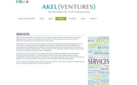 Screenshot of Services Page akelventures.com - SERVICES - captured Oct. 4, 2014