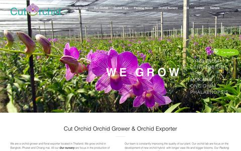 Screenshot of Home Page cutorchid.com - Orchid Grower & Orchid Exporters from Thailand|Cut Orchid Exporter - captured Sept. 30, 2014
