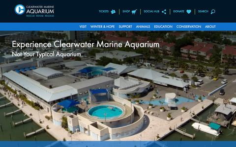 Screenshot of About Page seewinter.com - About | Clearwater Marine Aquarium - captured July 31, 2017