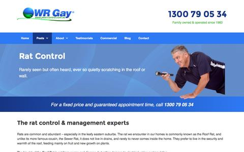 Rat Control & Removal in VIC | WR Gay