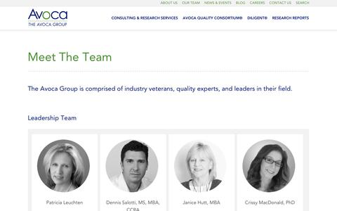 Screenshot of Team Page theavocagroup.com - Meet The Team - Avoca Group - captured May 11, 2018