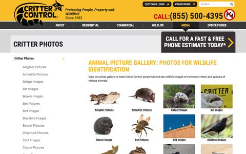 Screenshot of Press Page crittercontrol.com - Wildlife Images: Photo Gallery with Pictures of Animals - captured May 22, 2017