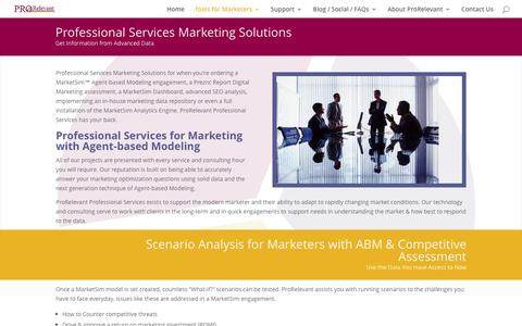 Professional Services for Marketing Professionals from ProRelevant Marketing Solutions