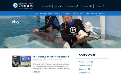 Screenshot of Blog seewinter.com - Blog | Clearwater Marine Aquarium - captured Aug. 11, 2018