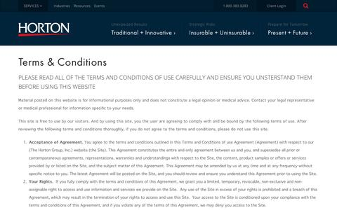 Screenshot of Terms Page thehortongroup.com - Terms & Conditions | The Horton Group - captured May 4, 2017