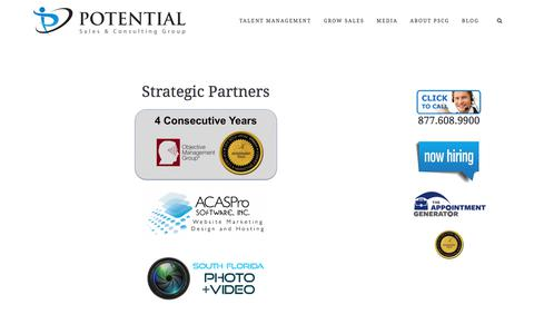 Strategic Partners – Potential Sales and Consulting Group