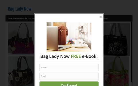 Screenshot of Home Page bagladynow.com - Bag Lady Now - captured April 13, 2016