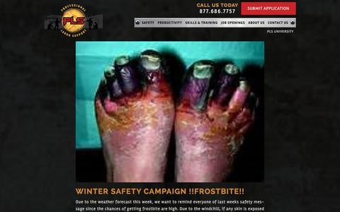 Screenshot of Blog pls.co - Blog - Professional Labor Support, LLC - captured Jan. 22, 2016