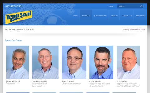 Screenshot of Team Page tephseal.com - TephSeal Auto Appearance > About Us > Our Team - captured Nov. 7, 2018