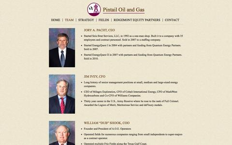 Screenshot of Team Page pintailoil.com - Team | Pintail Oil and Gas - captured Nov. 2, 2014