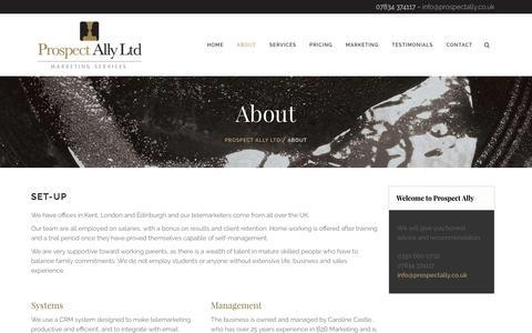 Screenshot of About Page prospectally.co.uk - About - Prospect Ally Ltd - captured Nov. 14, 2016