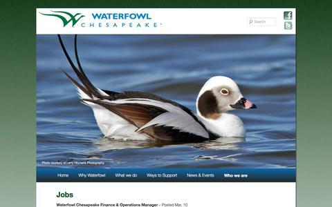 Screenshot of Jobs Page waterfowlchesapeake.org - Jobs   Waterfowl Chesapeake - captured Oct. 19, 2017