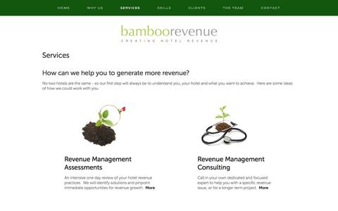 Screenshot of Services Page bamboorevenue.co.uk - Services — Bamboo Revenue - captured Sept. 30, 2014