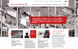 Old Screenshot Bain & Company Home Page