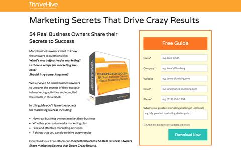 Screenshot of Landing Page thrivehive.com - Marketing Secrets That Drive Crazy Results | ThriveHive - captured Aug. 19, 2016