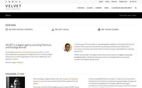 Screenshot of About Page velvetgroup.com - Agency - VELVET - captured Dec. 10, 2016