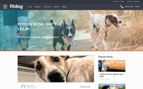 Screenshot of Blog fitdog.com - Meet Violet! Fitdog of the Month | Fitdog Blog: Off the Leash - captured Oct. 10, 2018