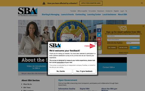 Open Government | The U.S. Small Business Administration | SBA.gov