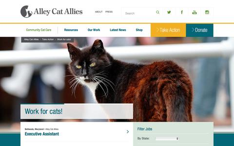 Screenshot of Jobs Page alleycat.org - Alley Cat Allies   Work for cats! - captured Aug. 26, 2016