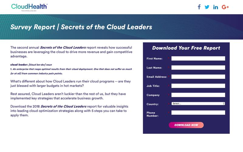 Survey Report | Secrets of the Cloud Leaders