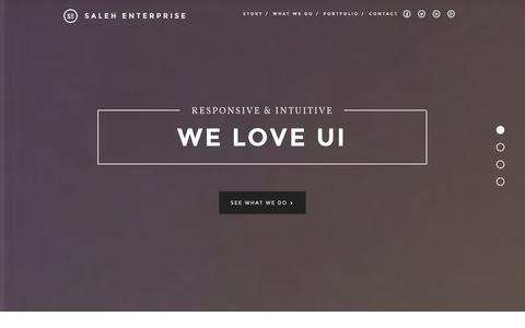 Screenshot of Home Page salehenterprise.com - Saleh Enterprise - captured Sept. 30, 2014