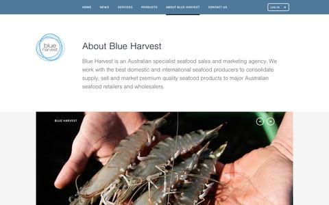Screenshot of About Page blueharvest.com.au - About Blue Harvest • Blue Harvest - captured Nov. 22, 2016