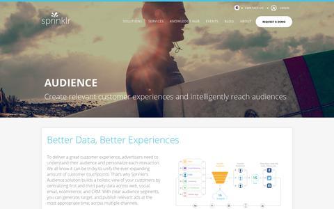 Audience Segmentation: Complete Target Marketing - Sprinklr
