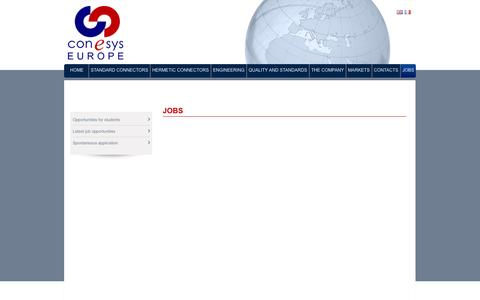 Screenshot of Jobs Page conesyseurope.com - Jobs   Conesys - captured Sept. 26, 2014