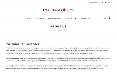 Screenshot of About Page pursanova.com - About Us - captured Sept. 20, 2017