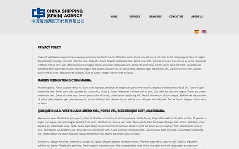 Screenshot of Privacy Page csspain.com - Privacy Policy - captured Nov. 5, 2016