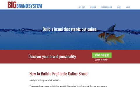 Screenshot of Home Page bigbrandsystem.com - How to Build a Profitable Online Brand - captured June 1, 2017