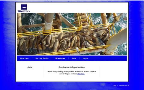 Screenshot of Jobs Page zenocean.com - Zenocean - Vacancies - captured Oct. 27, 2014