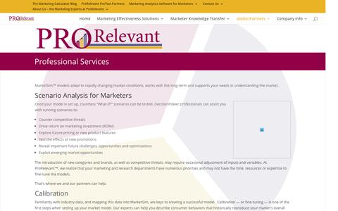 ProRelevant Professional Services for Marketing professionals
