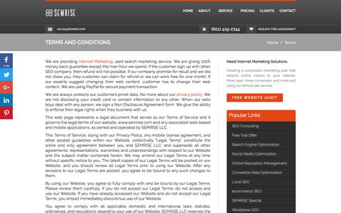 Screenshot of Terms Page semrise.com - Terms and Conditions - captured July 20, 2016