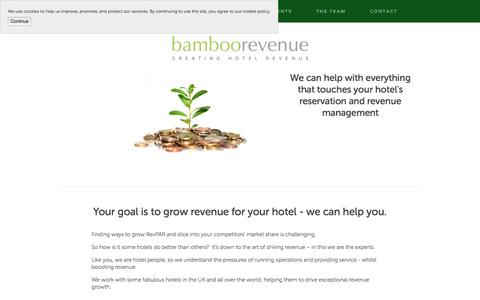Screenshot of Home Page bamboorevenue.co.uk - Bamboo Revenue - captured May 31, 2017