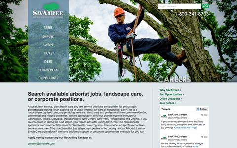 Screenshot of Jobs Page savatree.com - Tree and Lawn Care Jobs - Arborist Careers at SavATree - captured Sept. 23, 2014